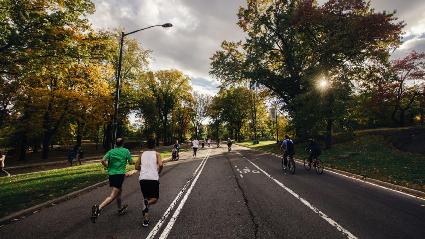 Frankfurt Marathon und Ostparklauf